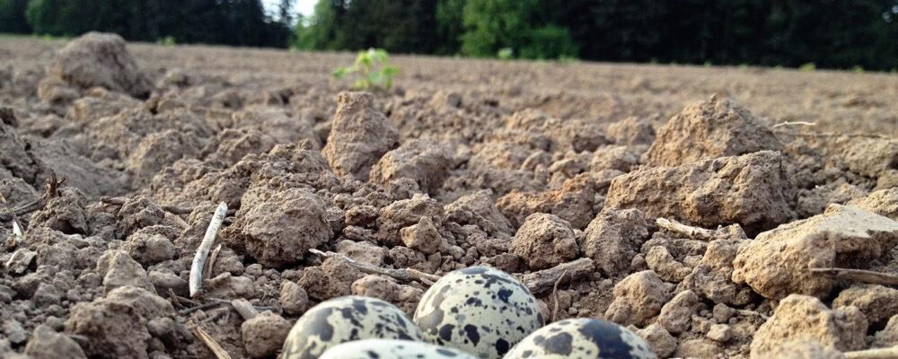 Soil Health SL